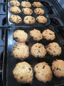 Buzymum - Cooked oat and raisin biscuits