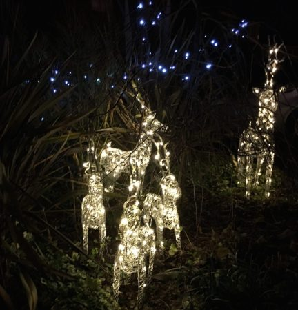 Buzymum - The final Christmas garden lights!