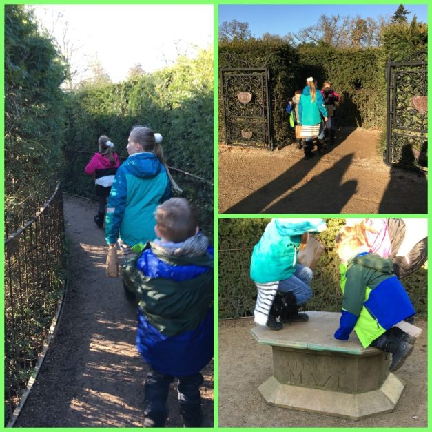 Buzymum - Getting to the centre of Cliveden Maze