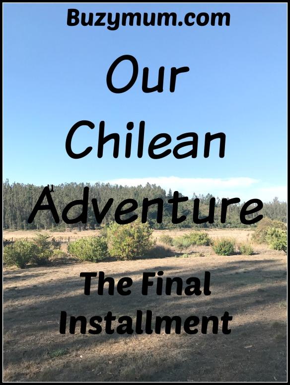 Buzymum - Our Chilean Adventure Final installment