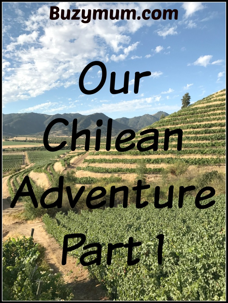 Buzymum - Our Chilean Adventure- Part 1