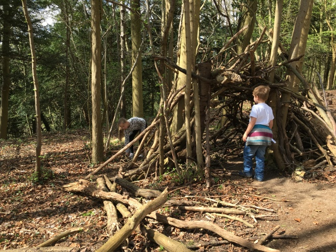 Buzymum - Building a camp in the woods at Hughenden manor