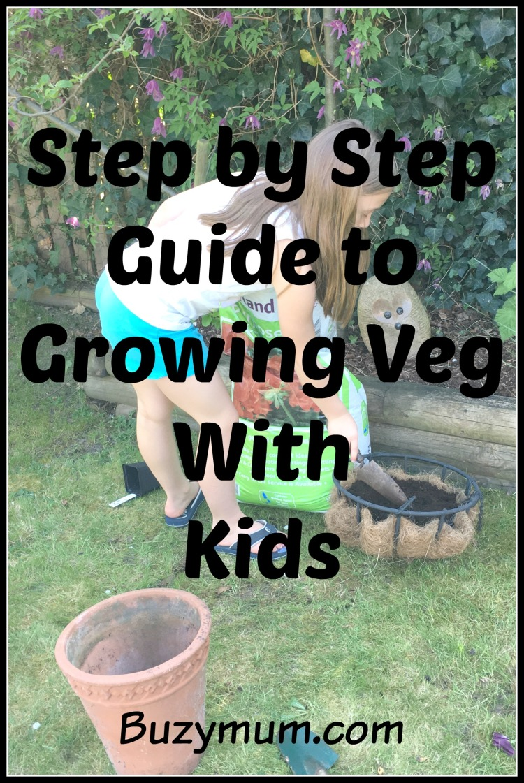 Buzymum - Step by Step Guide to Growing Veg With Kids