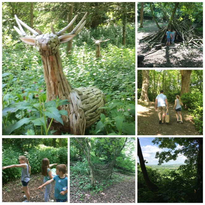 Buzymum - Sculpture, views and things to see on our woodland walk
